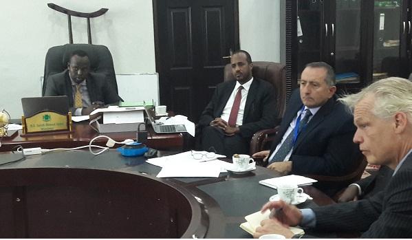 UNDP and MOLSA meeting 2