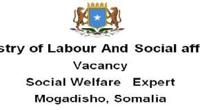 Minstry of Labour And Social affairs :VacancySocial Welfare Expert  Mogadisho, Somalia