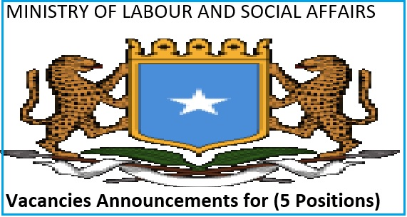 ministry of labour and social affairs vacancies announcements for   5 positions    u2013 wasaaradda